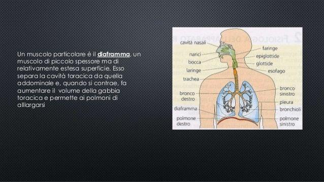 Metodi di trattamento di cura di dolore di vita