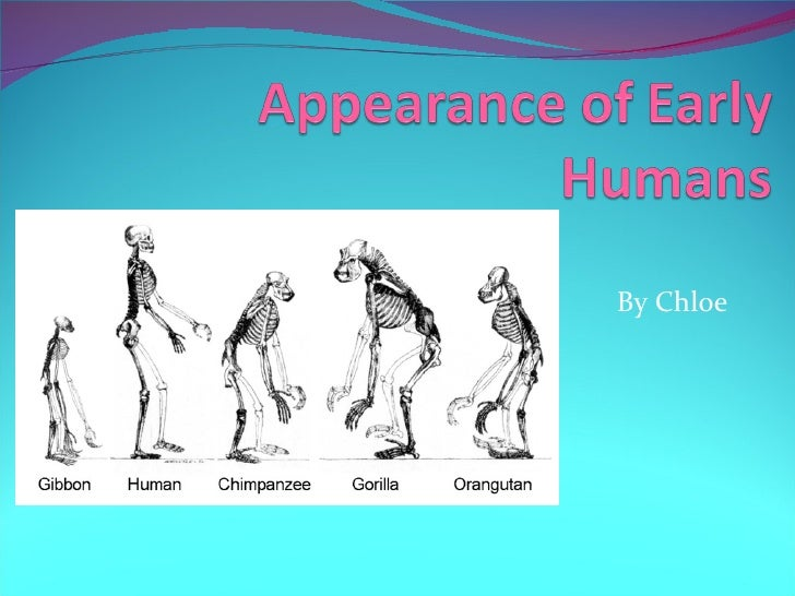 Chloe_Appearance of early humans