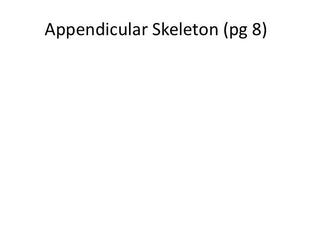 Appendicular Skeleton (pg 8)