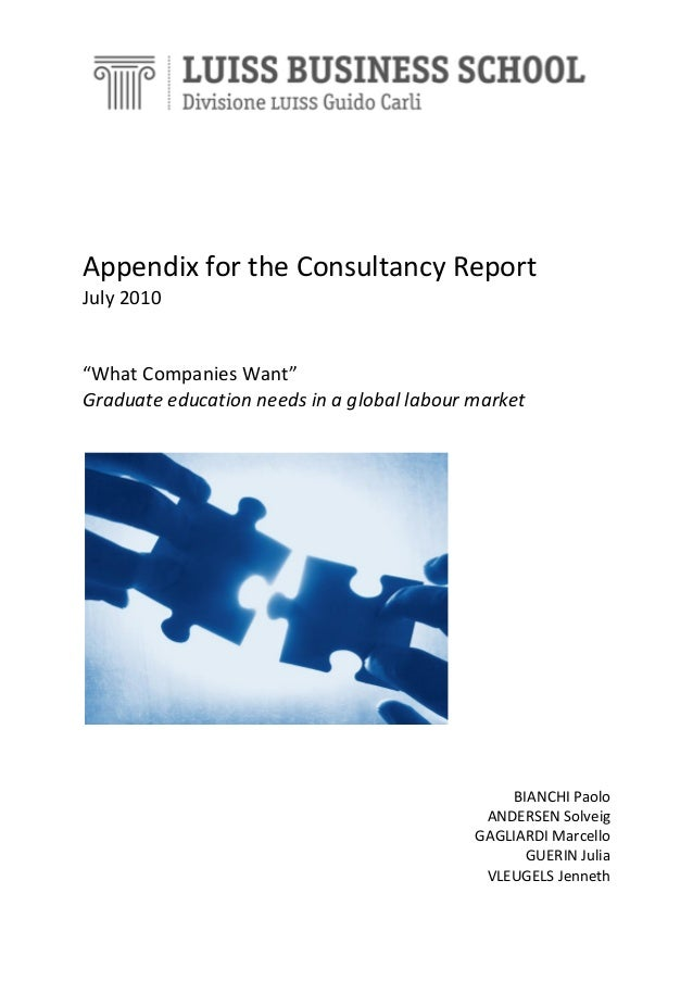 Appendix consultancy report. what companies want