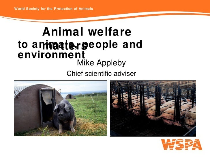to animals, people and environment Mike Appleby Chief scientific adviser Animal welfare matters