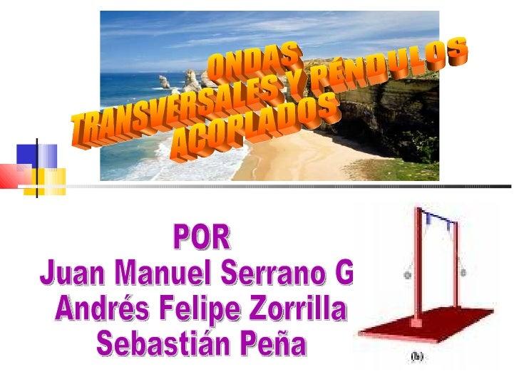 ONDAS  TRANSVERSALES Y PÉNDULOS  ACOPLADOS POR Juan Manuel Serrano G. Andrés Felipe Zorrilla Sebastián Peña