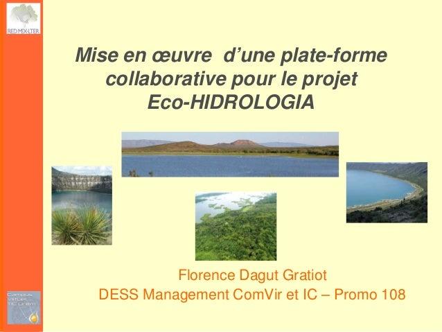 Mise en œuvre d'une plate-forme   collaborative pour le projet        Eco-HIDROLOGIA           Florence Dagut Gratiot  DES...