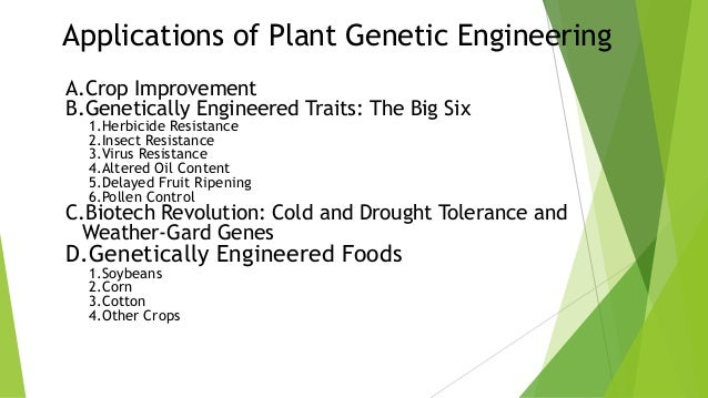 3 Applications Of Genetic Engineering