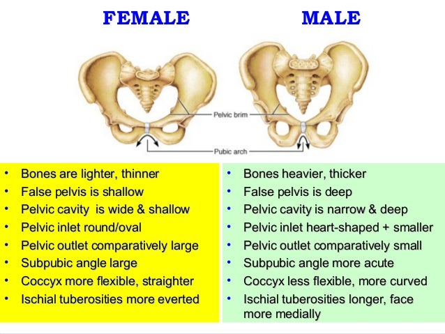 How to Build Stronger Bones recommendations