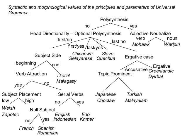 polysynthesis parameter