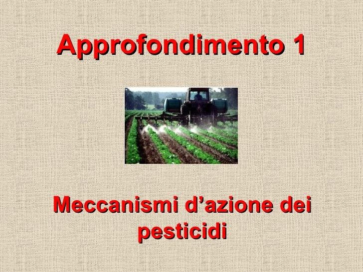 Approfondimento 1 Meccanismi d'azione dei pesticidi