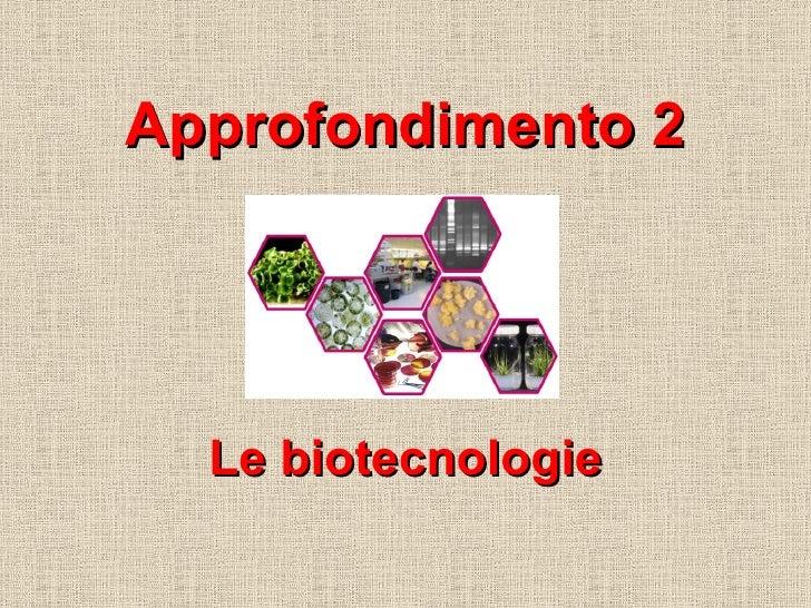 Approfondimento 2 Le biotecnologie