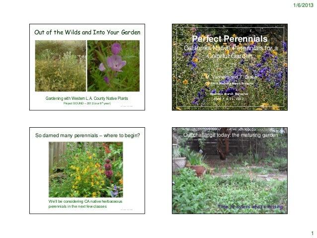 Perfect Perennials - Notes