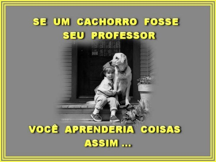 Aprenda com um_cachorro