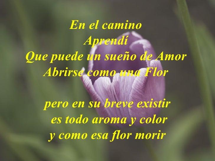 En el camino  Aprendí  Que puede un sueño de Amor  Abrirse como una Flor    pero en su breve existir  es todo aroma y colo...