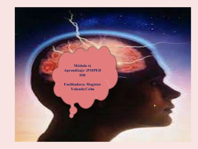 Módulo #1  Aprendizaje (PSIPED  538)  Facilitadora: Magíster  Yolanda Cohn