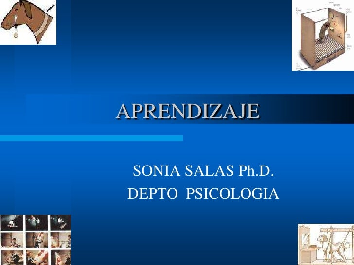 Aprendizaje / Psicología