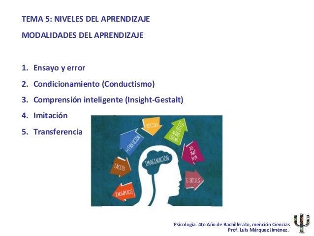 TEMA 5: NIVELES DEL APRENDIZAJEMODALIDADES DEL APRENDIZAJE1. Ensayo y error2. Condicionamiento (Conductismo)3. Comprensión...