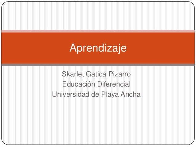 Skarlet Gatica Pizarro Educación Diferencial Universidad de Playa Ancha Aprendizaje