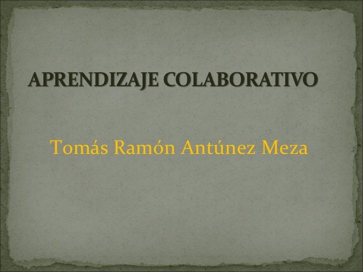<ul><li>Tomás Ramón Antúnez Meza </li></ul>