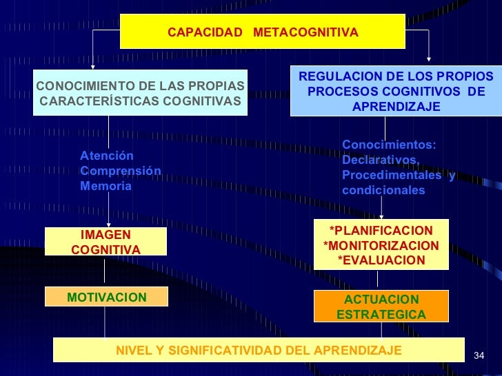 Procesos cognitivos mapa conceptual de los aprendizaje for First flush diverter plans