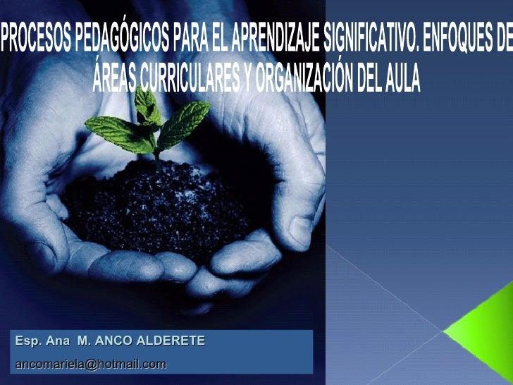 PROCESOS PEDAGÓGICOS PARA EL APRENDIZAJE SIGNIFICATIVO. ENFOQUES DE  ÁREAS CURRICULARES Y ORGANIZACIÓN DEL AULA Esp. Ana  ...