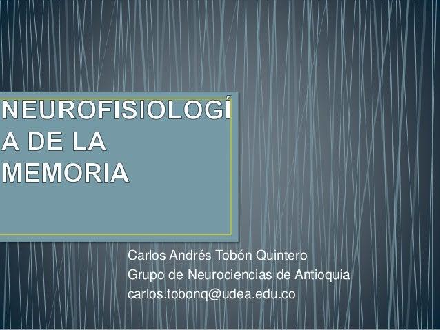 Carlos Andrés Tobón Quintero Grupo de Neurociencias de Antioquia carlos.tobonq@udea.edu.co