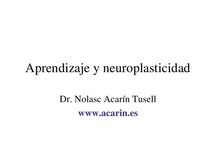 Aprendizaje y neuroplasticidad        Dr. Nolasc Acarín Tusell           www.acarin.es