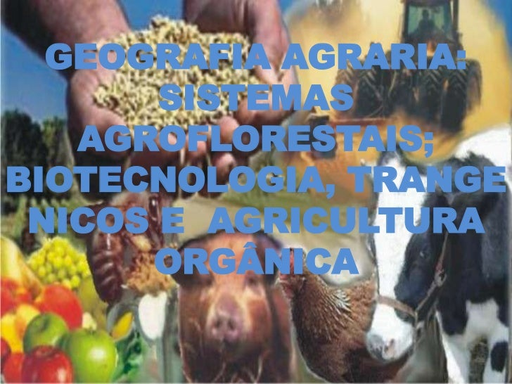 GEOGRAFIA AGRARIA:       SISTEMAS   AGROFLORESTAIS;BIOTECNOLOGIA, TRANGE NICOS E AGRICULTURA      ORGÂNICA