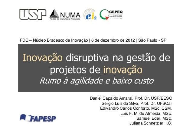 Inovação Disruptiva na Gestão de Projetos de Inovação - rumo à agilidade e baixo custo