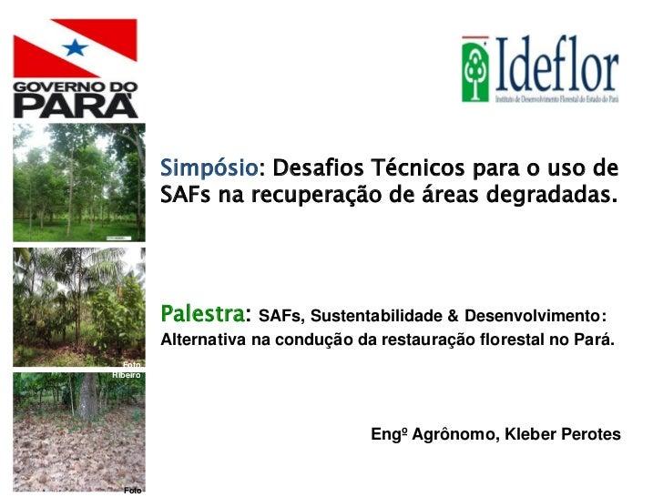 Simpósio: Desafios Técnicos para o uso de             SAFs na recuperação de áreas degradadas.             Palestra:    SA...