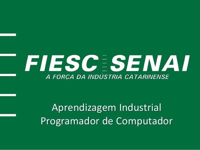 Aprendizagem Industrial Programador de Computador