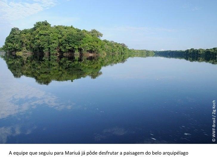 © WWF-Brasil / Zig Koch A equipe que seguiu para Mariuá já pôde desfrutar a paisagem do belo arquipélago