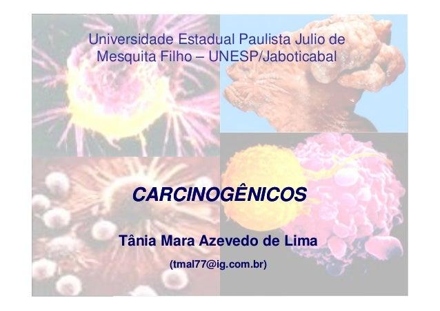 Universidade Estadual Paulista Julio de Mesquita Filho – UNESP/Jaboticabal CARCINOGÊNICOSCARCINOGÊNICOS Tânia Mara Azevedo...