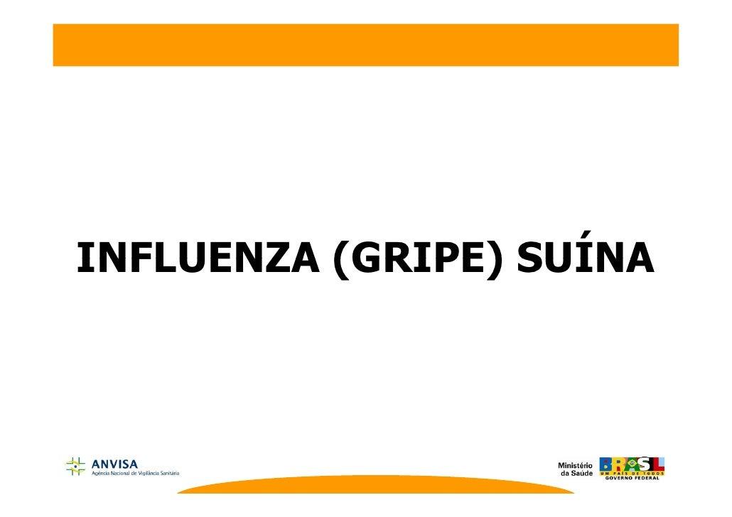 Apresentacao Gripe Suina