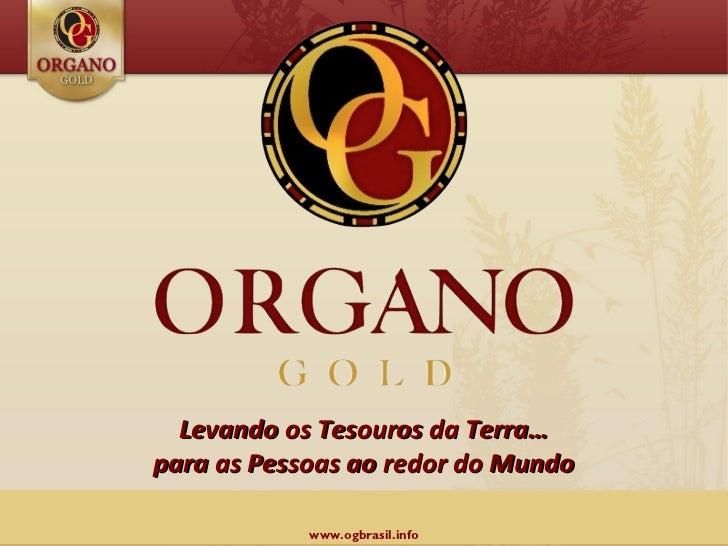 Apresentacao Organo Gold no Brasil