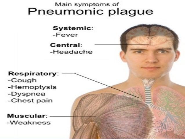 Bubonic Plague Essay
