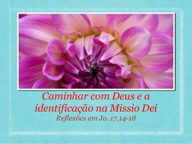 Caminhar com Deus e aidentificação na Missio Dei    Reflexões em Jo. 17.14-18
