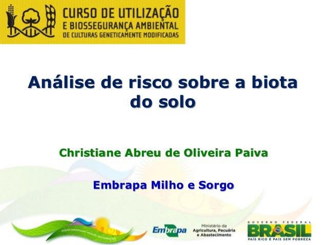 Análise de risco sobre a biota           do solo   Christiane Abreu de Oliveira Paiva        Embrapa Milho e Sorgo