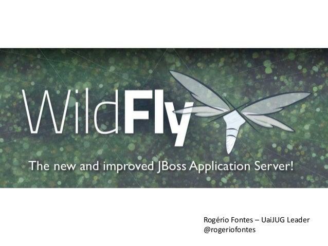 Apresentação wild fly-semrevisao