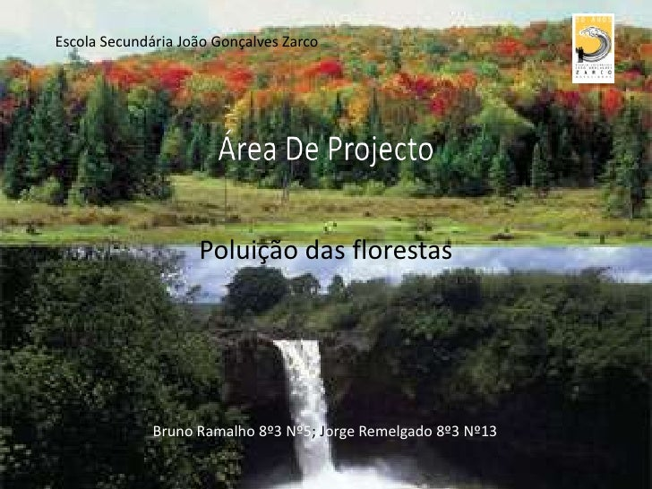Escola Secundária João Gonçalves Zarco<br />Poluição das florestas<br />Área De Projecto<br />Bruno Ramalho 8º3 Nº5; Jorge...