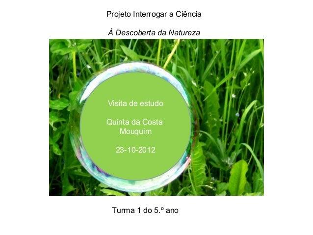 Projeto Interrogar a CiênciaÀ Descoberta da NaturezaVisita de estudoQuinta da Costa   Mouquim  23-10-2012 Turma 1 do 5.º ano