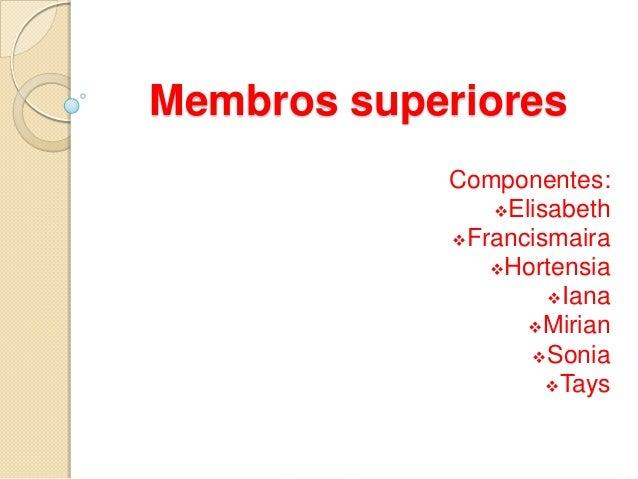 Membros superiores Componentes: Elisabeth Francismaira Hortensia Iana Mirian Sonia Tays
