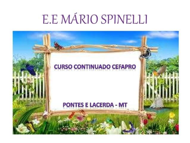 E.E MÁRIO SPINELLI