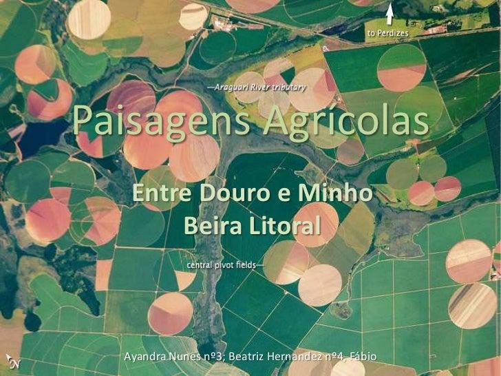 Paisagens Agrícolas   Entre Douro e Minho       Beira Litoral  Ayandra Nunes nº3; Beatriz Hernandez nº4, Fábio