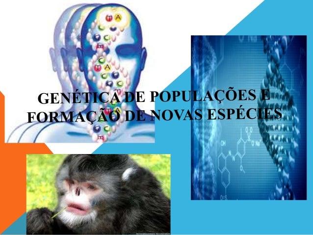 GENÉTICA DE POPULAÇÕES A GENÉTICA DE POPULAÇÕES ESTUDA OS MECANISMOS DA HEREDITARIEDADE EM NÍVEL POPULACIONAL, LEVANDO EM ...
