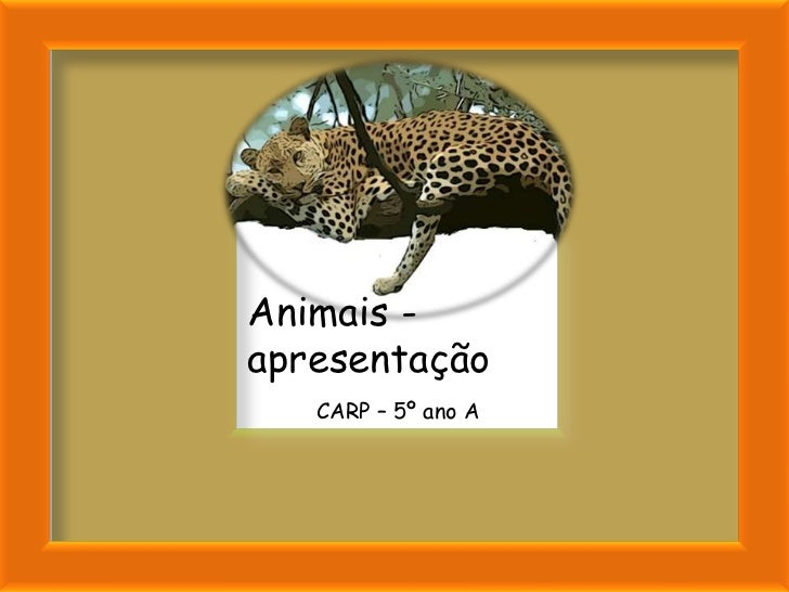 Animais -apresentação   CARP – 5º ano A