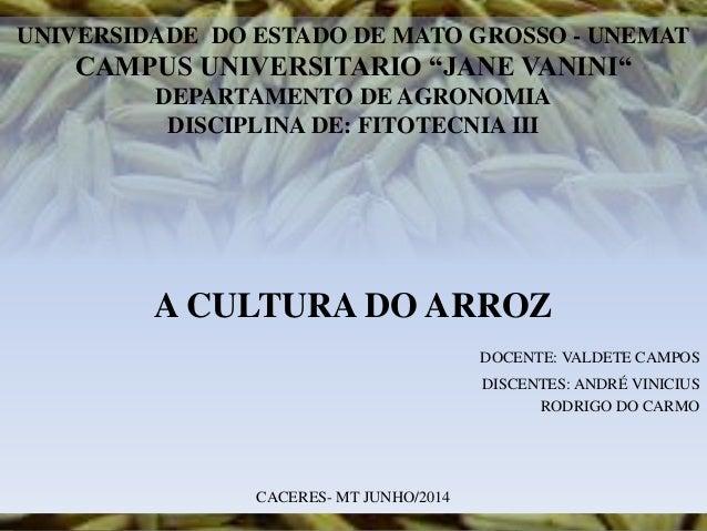 "UNIVERSIDADE DO ESTADO DE MATO GROSSO - UNEMAT CAMPUS UNIVERSITARIO ""JANE VANINI"" DEPARTAMENTO DE AGRONOMIA DISCIPLINA DE:..."