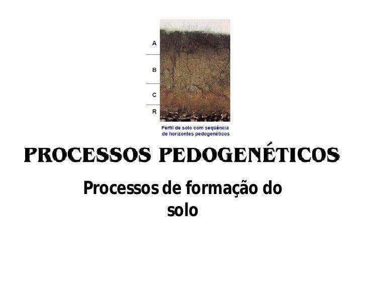 Processos de formação do           solo