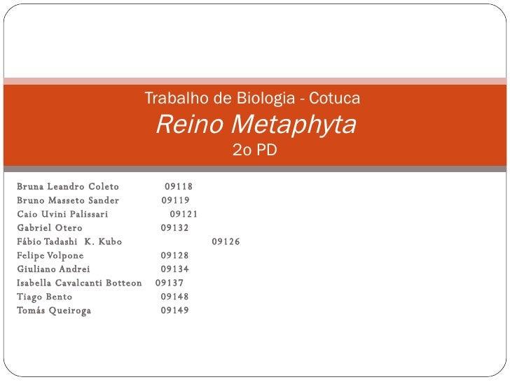 Bruna Leandro Coleto  09118 Bruno Masseto Sander  09119 Caio Uvini Palissari  09121 Gabriel Otero    09132 Fábio Tadashi  ...