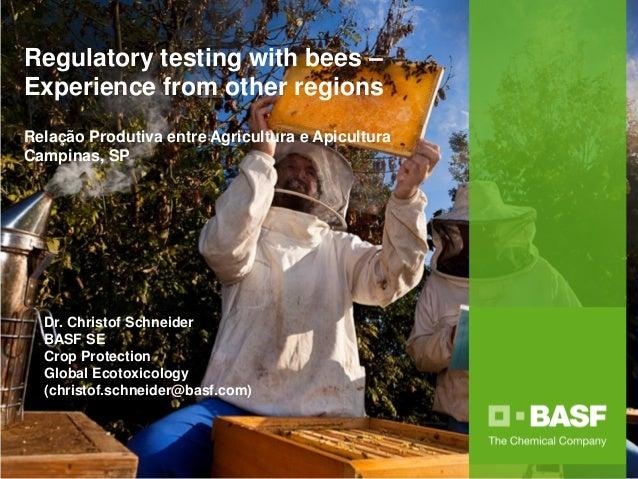 Regulatory testing with bees – Experience from other regions Relação Produtiva entre Agricultura e Apicultura Campinas, SP...