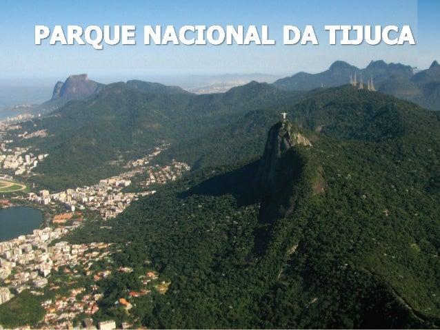 Esta apresentação é parte integrante do Guia de Campo do Parque Nacional da Tijuca, resultado de uma pesquisa desenvolvida...