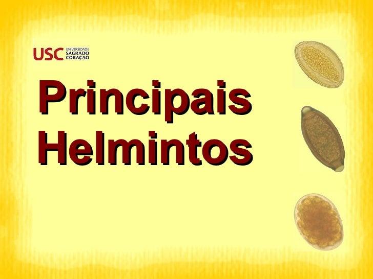 Principais Helmintos