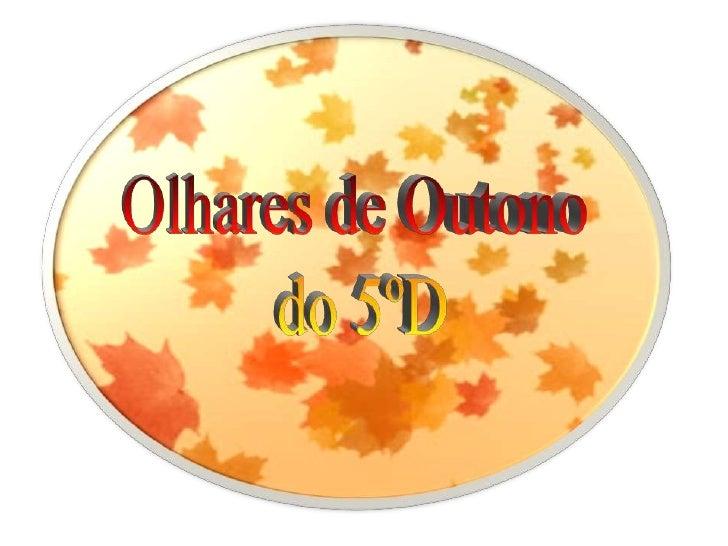 Olhares de Outono<br /> do 5ºD<br />